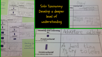 G1 Solo Taxonomy